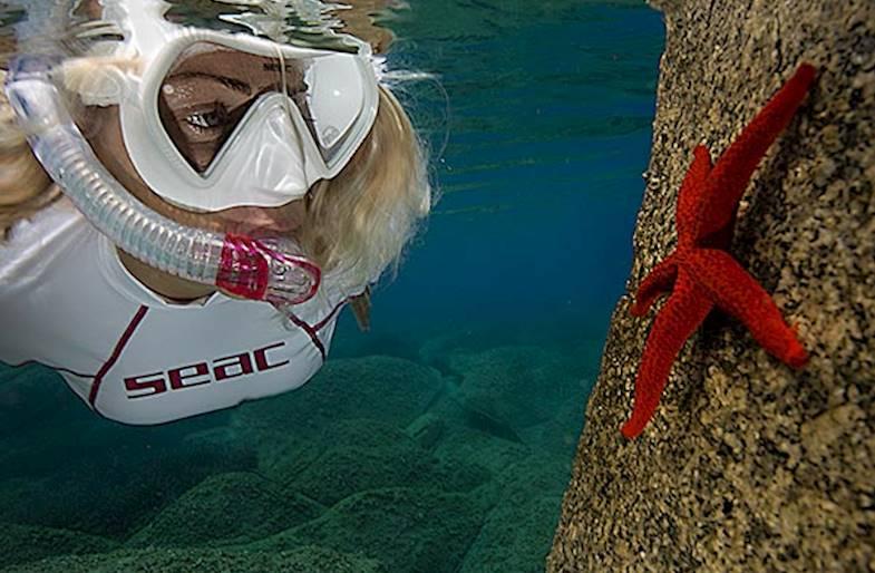Snorkeling Tour a Isola Gallinara